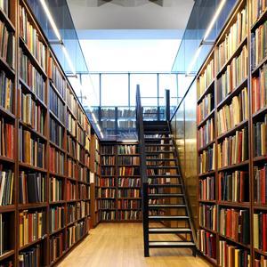 Библиотеки Батыревы