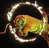 Цирки в Батыреве